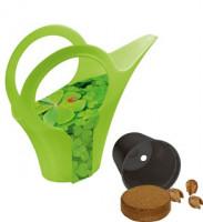 Groen/groen