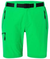 Fern-green (ca. Pantone 342C)